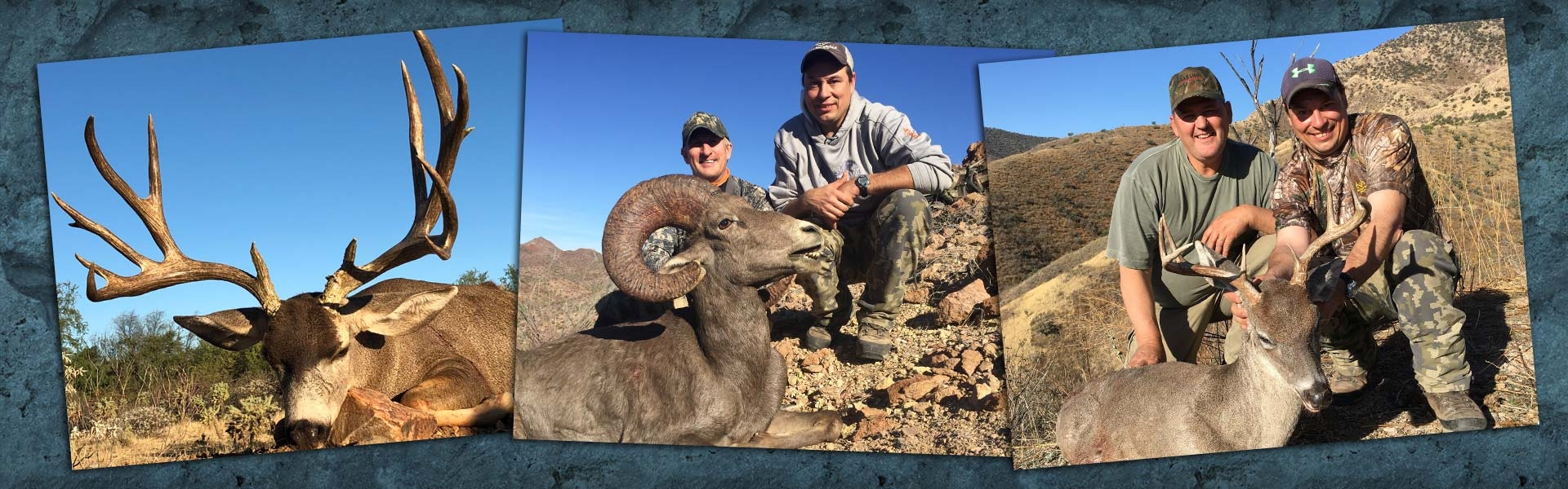 Mexico Trophy Big Game Hunting Consultant